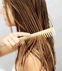 При секущихся кончиках поможет лечение волос кокосовым маслом.