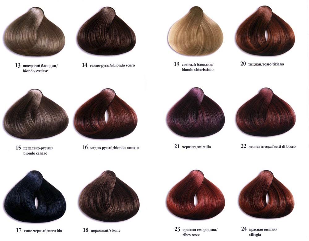 Какие цвет волос бывают