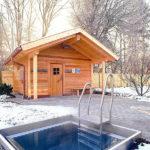 Из чего лучше строить баню: преимущества и недостатки материалов